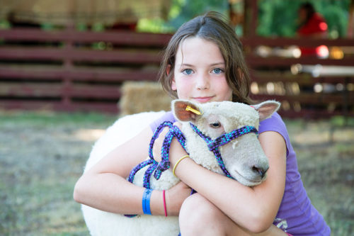 Girl and lamb